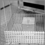 CleanLine 2000 EX | basket variations for the basins